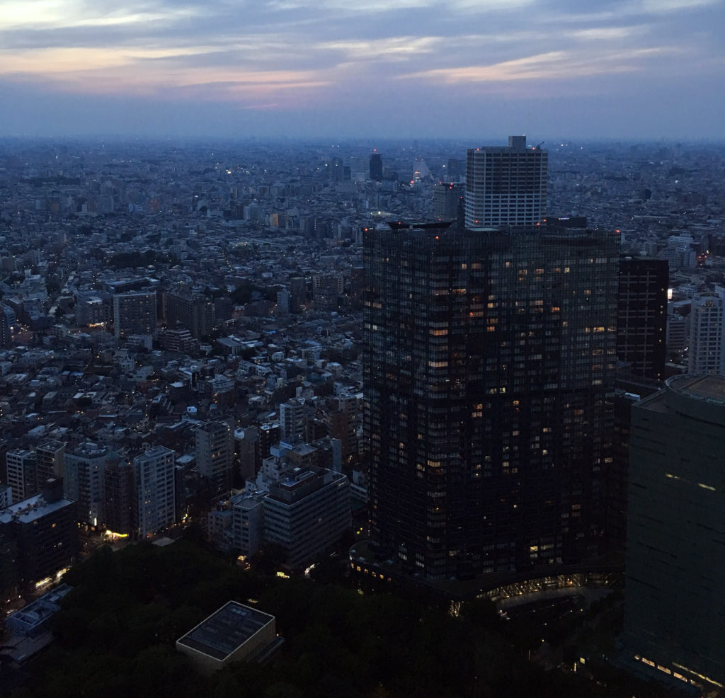 Tokyo Metropolitan Government Building panoramic view