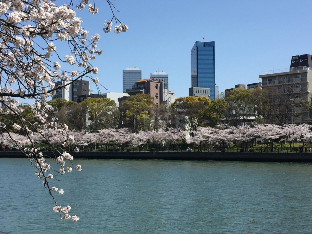 View across Okawa River during springtime. Photo credit Meaghan Alder