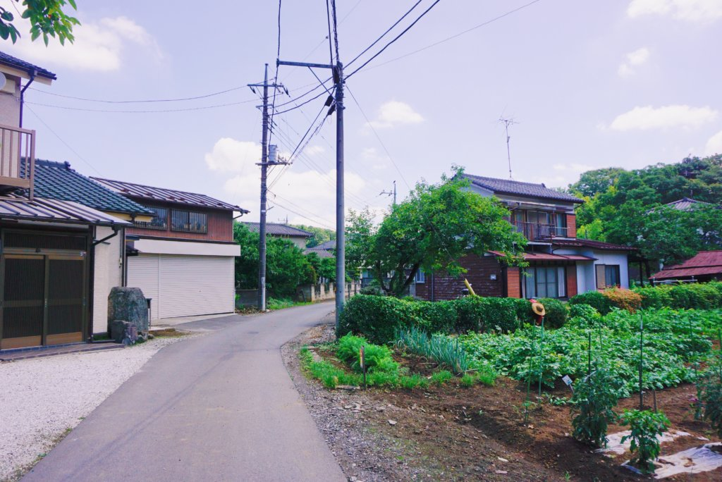 The residential area you will go through when heading towards Totoro's Forest.