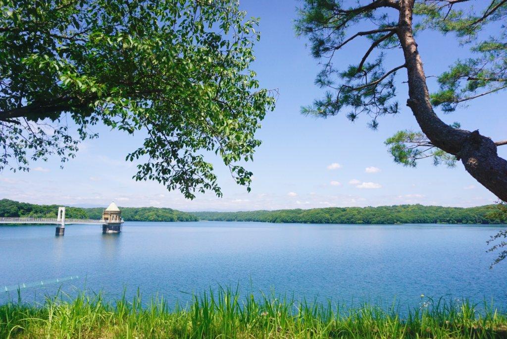 Sayama Lake. Absolutely stunning.