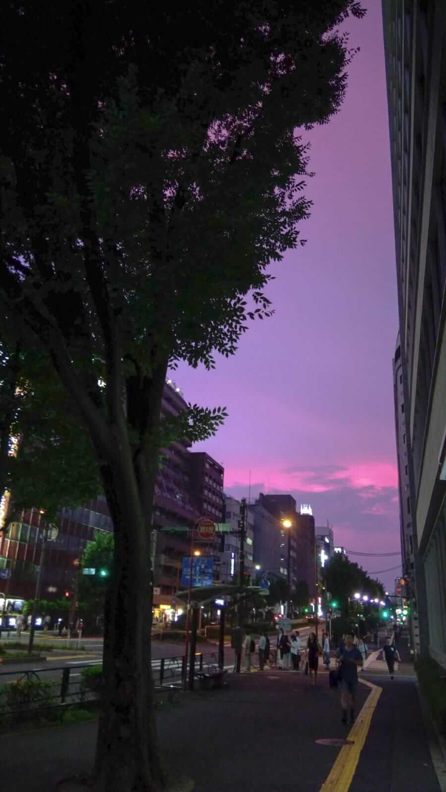 Sunset view at Higashi Shinjuku, next to Hanazono Shrine.