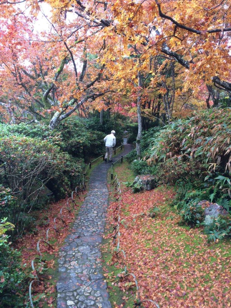 Somewhere down in Arashiyama