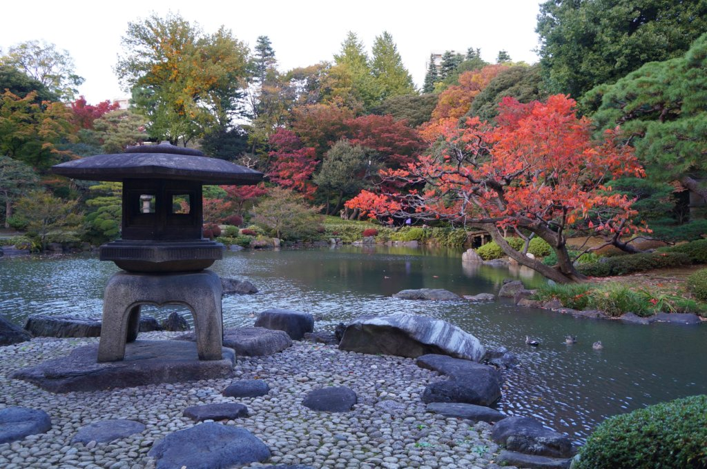 The Japanese side of the garden.