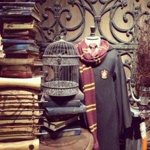 Harry_Potter_costume