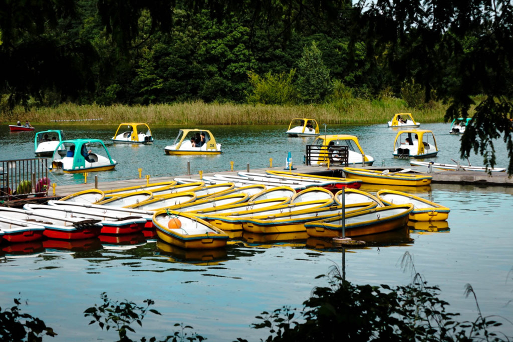 you can hire a boat - Showa Kinen Park